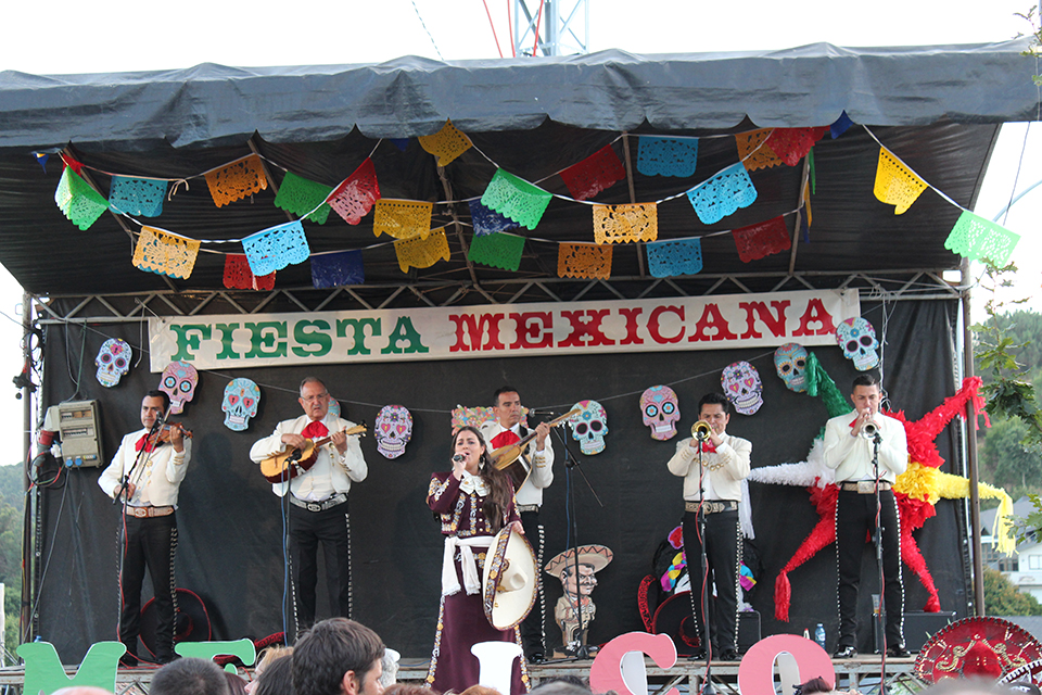 fiesta-mexicana-avion-2015